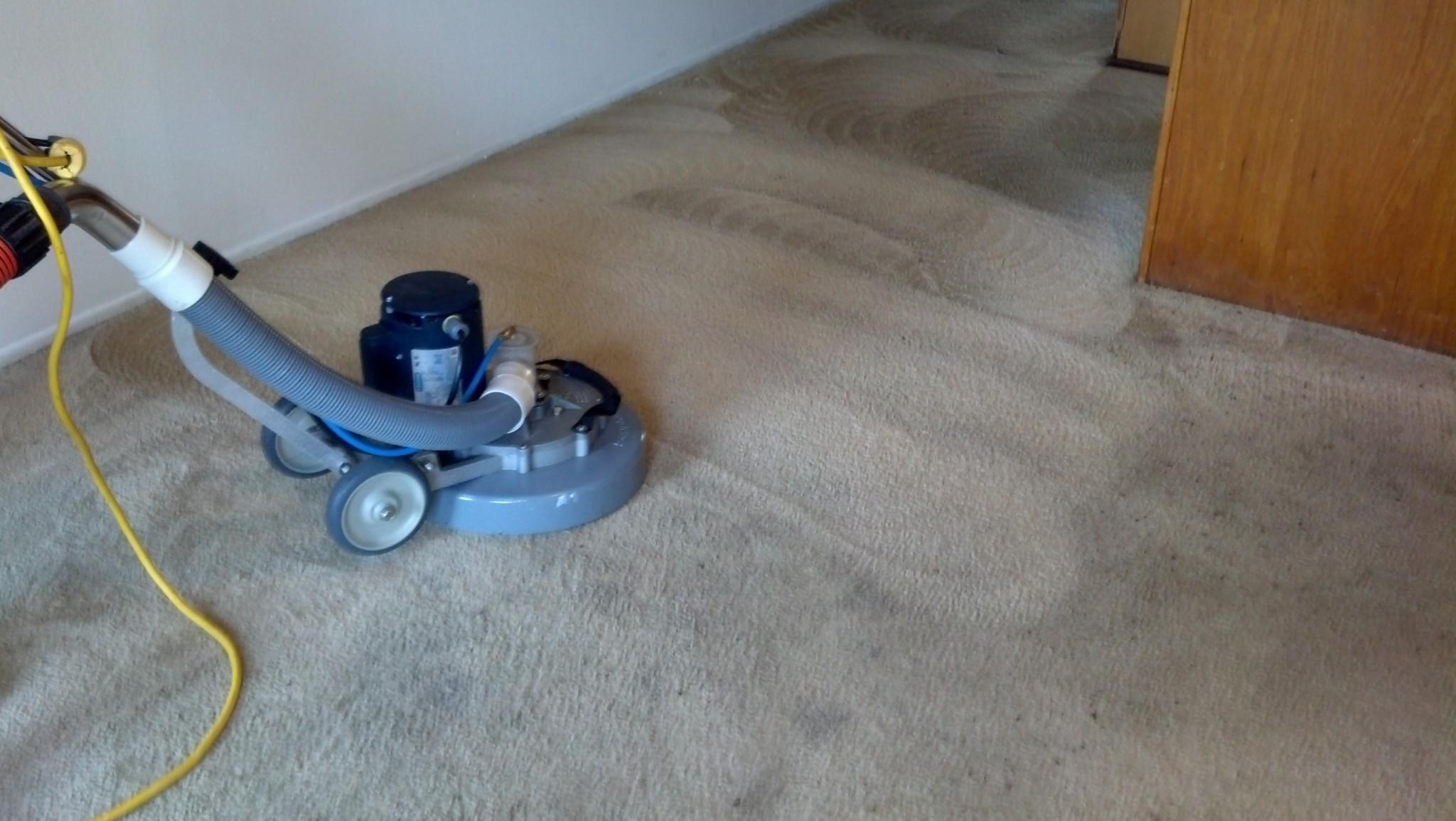 Carpet Cleaned in Santa Rosa Beach Florida