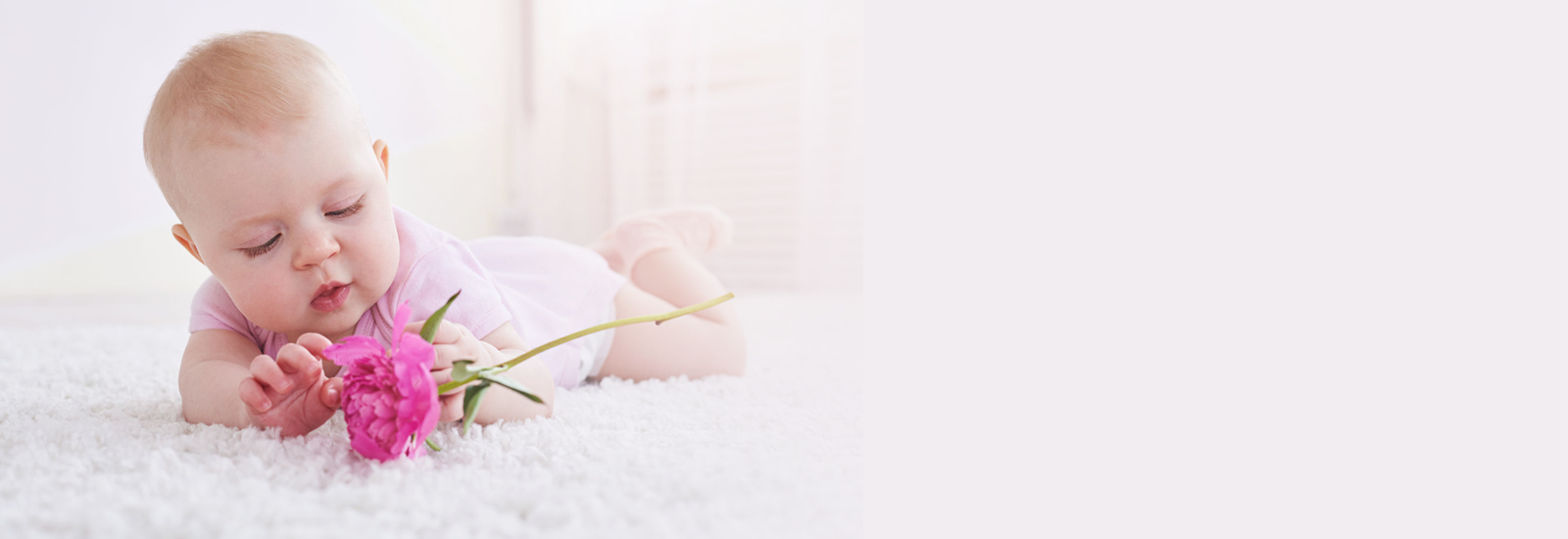 Carpet Cleaning In Fort Walton Beach Niceville And